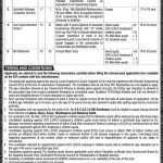LESCO Lahore Electric Supply Company NTS Jobs 2020 Application Form Roll No Slip