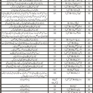 Directorate General Social Welfare CTS jobs 2020 Roll No Slip