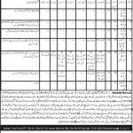 Directorate of Litracy and Non Formal Education Jobs 2020 CTS Test Roll No Slip
