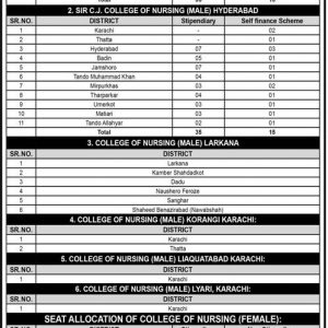 Directorate of Nursing Sindh NTS Admission 2020 Application Form