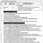 Policy & Strategic Planning Unit NTS Jobs 2020 Application Form