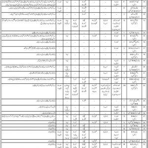 Social Welfare Department Balochistan Jobs 2021