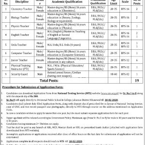 Divisional Public School DPS College Jahanian Khanewal NTS Jobs 2020