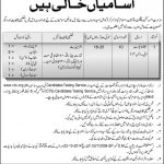 Ministry of Kashmir Affairs & GB CTS Jobs 2020 Application Form