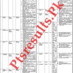 Punjab Population Welfare Department 2020 NTS Test Roll No Slip