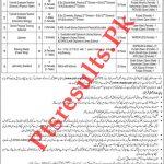WAPDA Teacher PTS Jobs 2020 Application Form