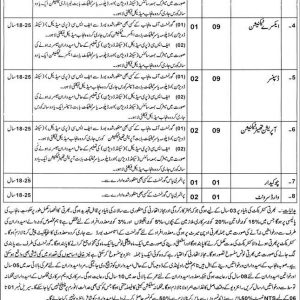 THQ Hospital Gujar Khan Jobs 2020 NTS Application Form