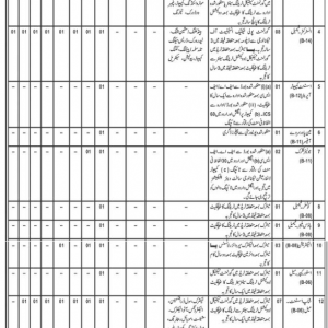 Directorate of Manpower Training Balochistan Jobs 2020 CTS Application Form Roll No Slip Test Schedule Download online