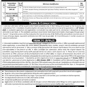 Lakki Wildlife Division ETEA Jobs 2020 Apply Online Roll No Slip Syllabus Download Online