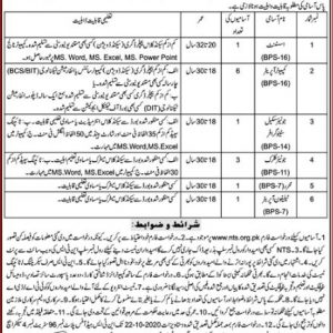 NTS Deputy Commissioner District Kolai Jobs 2020 Application Form Roll No Slip Test Schedule Download Online