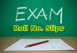 Sindh Directorate General School Education & Literacy Department NTS Roll No Slip Download Online