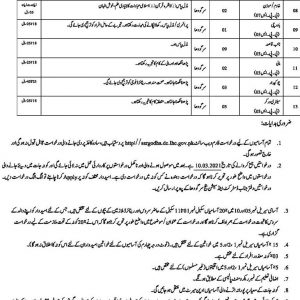 District & Session Courts Sargodha Jobs 2021 Application Form Test Date Download Online