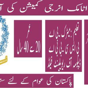 Pakistan Atomic Energy Commission PAEC Jobs 2021 Apply Online