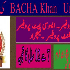 Bacha Khan University Charsadda Jobs 2021 Application Form Interview Date Check Online
