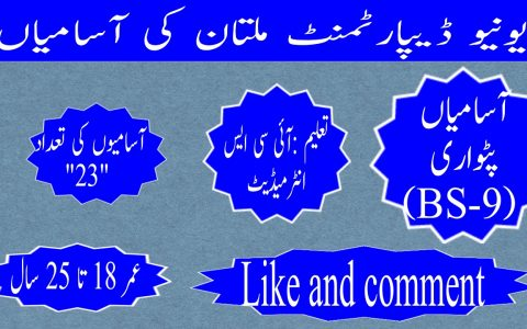 Revenue Department Multan Jobs