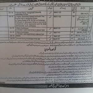 District and Session Judge Kasur OTS Jobs 2021 Application Form Roll No Slip