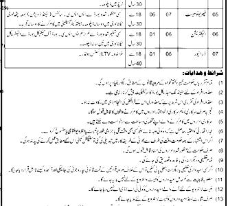 Regional Blood Center Swat KPK ETEA jobs